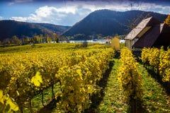 Autumn Durnstein. Beautiful autumn landscape of Durnstein, Austria stock photo