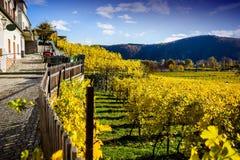 Autumn Durnstein. Beautiful autumn landscape of Durnstein, Austria royalty free stock photography