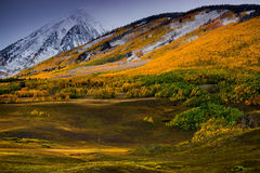 An Autumn Dusting Royalty Free Stock Images