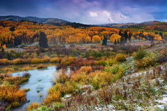 Autumn Dusting Stock Photography