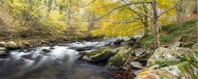 Autumn on the east lynn river somerset uk. Autumn colours along the east lynn river near watersmeet exmoor uk stock photos