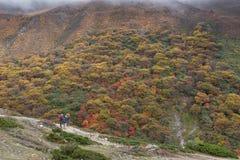 Autumn in EBC trekking route. Nepal. Stock Photography