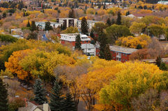 Autumn edmonton Royalty Free Stock Photography