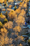 Autumn edmonton city Stock Photo