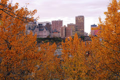 Autumn edmonton in sunset. Autumn view of the downtown buildings and  forest, edmonton, alberta, canada Stock Photo