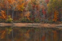 Autumn At een Meer met Lage Waterspiegels Stock Foto