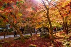 Autumn at Eikando, Kyoto, Japan Stock Photo