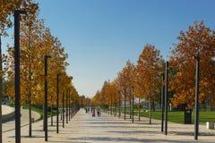 Autumn In el nuevo parque moderno Krasnodar de la ciudad, construido a expensas del hombre de negocios ruso Sergei Galitsky Día a fotos de archivo libres de regalías