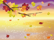 Autumn elegant wallpaper Stock Photos