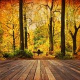 Autumn Elegy Stockfotografie