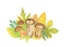 Autumn elements arrangement with forest mushrooms and multicolored green, orange, yellow leaves seasonal fall holidays watercolor