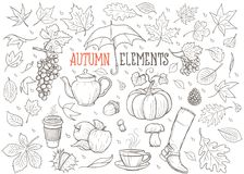 Autumn Elements Hand Drawn Illustration Stock Fotografie