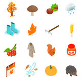 Autumn elements icons set, isometric 3d style. Autumn elements icons set in isometric 3d style on a white background Royalty Free Stock Photography