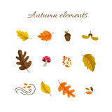 Autumn elements set. Vector autumn elements in modern flat style - mushroom, acorn, oak and maple leaves isolated on white background. Perfect for your design Royalty Free Stock Photo