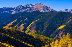 Autumn in the Elk Mountains. Autumn landscape of upper castle creek valley south of aspen colorado Stock Images