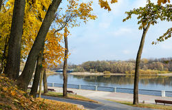 Autumn embankment of river Sozh Stock Photo