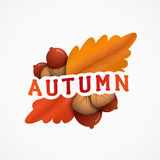 Autumn emblem with an inscription, red and yellow leaves, acorns. Vector illustration of a tag isolated on a white background Stock Illustration