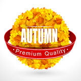 Autumn emblem Royalty Free Stock Photos
