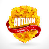 Autumn emblem Stock Photo