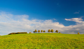 Autumn on a empty golf course. At sunset Stock Images