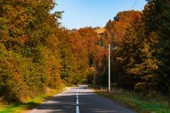 Autumn Empty Road Landscape Colors in aard stock fotografie