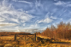 Autumn England landscape. Autumn forest, cloudy sky, field, usual England landscape Royalty Free Stock Images