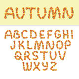 Autumn english alphabet. Of yellow leaves  on white with sample text Stock Photos