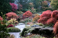 Autumn English Garden Stock Photography