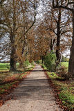 Autumn in an English rural Lane Royalty Free Stock Images