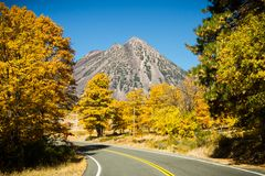 Autumn Eruption Around Black Butte. Black Butte volcanic cinder cone presents a stark contrast to surrounding fall color. Mount Shasta, California, USA stock image