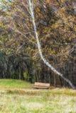 Autumn in ethnic museum Pirogovo Royalty Free Stock Photos