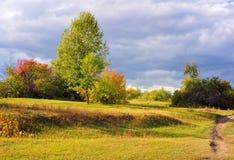 Autumn Evening Stockfotos