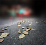 Autumn evening in city Royalty Free Stock Photography