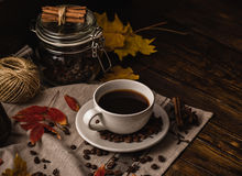 Autumn Evening with Cup of Coffee. Stock Image