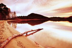 Autumn evening at lake after sunset. Wet sand beach with dry tree  fallen into water. Colorful sky. Royalty Free Stock Images