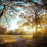 Autumn evening Royalty Free Stock Image