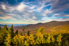 Autumn evening view  from Bald Mountain, at Franconia Notch Stat Royalty Free Stock Image