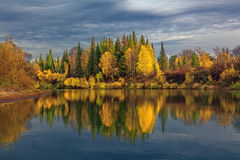 Autumn evening in wild Siberian taiga Royalty Free Stock Images