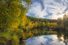 Autumn evening in wild taiga Royalty Free Stock Images