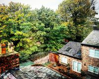 An autumn expiration in the liverpool garden. royalty free stock photo
