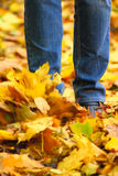 Autumn explosion. Kick in jeans on autumn leaves removed close up Royalty Free Stock Photo