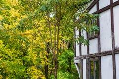 Autumn Exterior Stockfotos