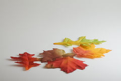 Autumn fabric leaves. Fall leaves made of fabric in autumn colors Stock Photography