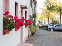 The autumn facade of the house stock image