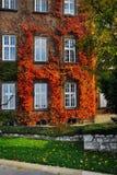 Autumn facade Stock Photography