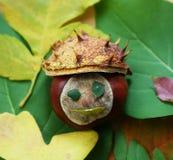 Autumn-face Stock Image