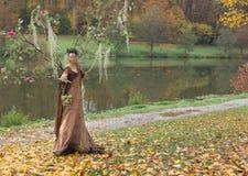 Autumn Fairy Photographie stock