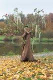 Autumn Fairy Image stock