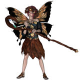 Autumn Fairy. A fairy is a mythical creature of folklore and mystery dressed in the colors of Autumn Stock Photography