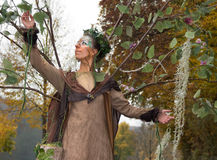 Autumn fairy Royalty Free Stock Photography